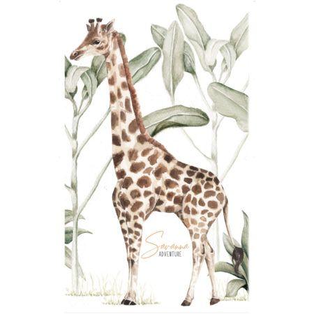 Animals Dekornikcom Wallstickers And Wallpapers Store