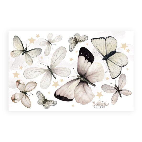 motyle2