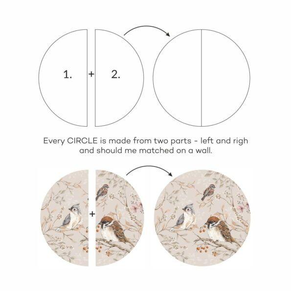 circles_birds2